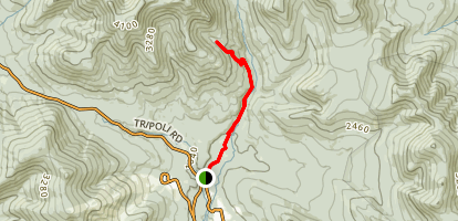 Timber Camp Trail Map