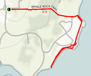 Whale Rock Trail Map