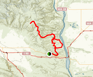 Green Dots Trails at Whiskey Dick Map