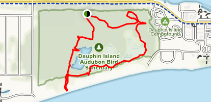 Dauphin Island Audubon Bird Sanctuary - Alabama | AllTrails on
