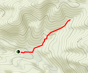 Left Hand Fork Trail Map