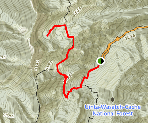 Day Lake and Stansbury Crest Trail to South Willow Lake Map