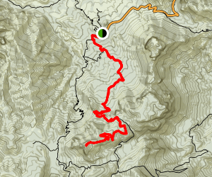 Emory Peak via Pinnacles Trail Map