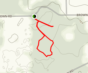 Brown's Lake Bog Trail Map