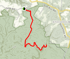 Raymer Hollow Trail Map