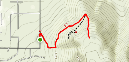 Yellow Fork of East Mountain Map