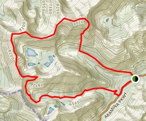 Mount Lineham Loop Trail Map