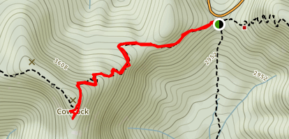 Appalachian Trail: Tesnatee Gap to Cow Rock Mountain Map