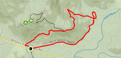 Lilly Pilly Gully Track Map