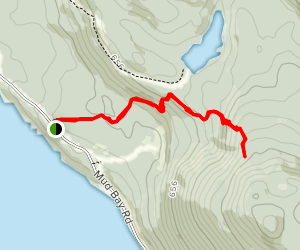 Mount Riley Trail Map