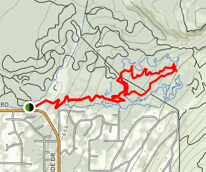 Queen Bee to Janice's Jive and Lower LLama Trail Map