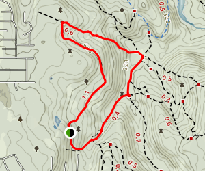 Rocky Pools Walk Map