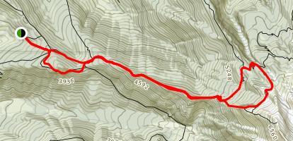 McNeil Point Trail Map