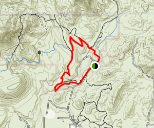 Spur Cross Dragonfly Loop Map