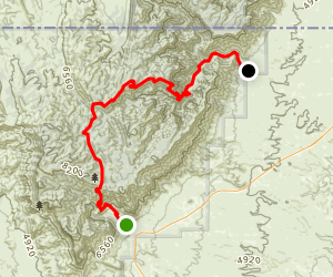 Tejas Trail to Mckittrick Canyon Map