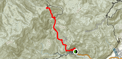 Our Lady Mountaineering Trail 聖母登山步道 Map