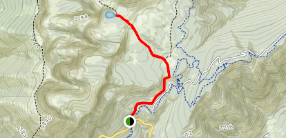 Ski Lake Trail Map