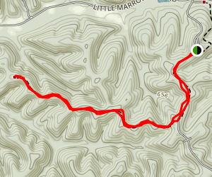 Ridgetop Trail Map
