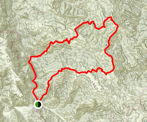 Kelly Lake  Loop: Steer Ridge and Grizzly Gulch Trails Map