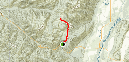 Phillips Canyon Trail Map