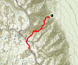 Mount Tyndale Trail Map