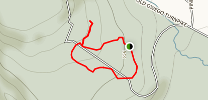 The Trees of Grey Towers Trail Map