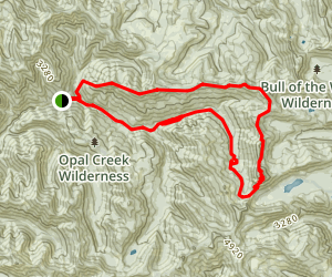 Bull of the Woods Loop Trail Map