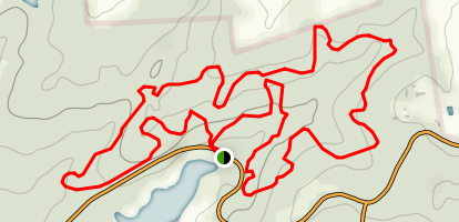 Tyler State Park C and D Loop Trail Map