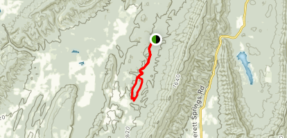 Loblolly Trail Map