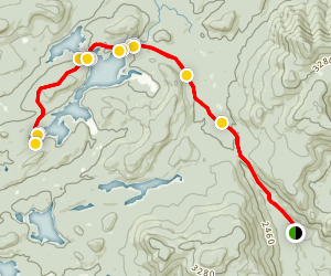 Cedar Lakes and French Louie Trail Map