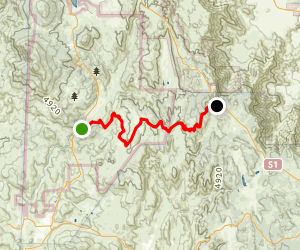East Side Trail to Penny Pines Map