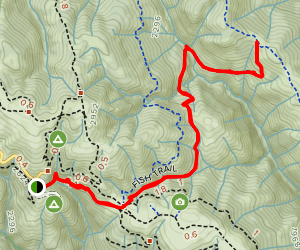 Fish Trail to Middle Ridge Map