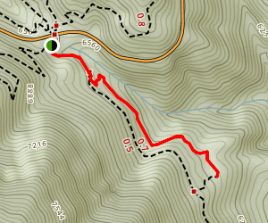 Vincent's Cabin Trail Map