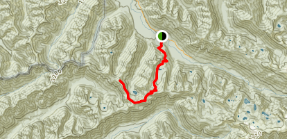 Mink Lake Trail to Bogachiel River and Slide Peak Route #2 Map