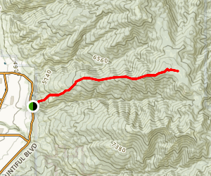 North Holbrook Route Trail Map