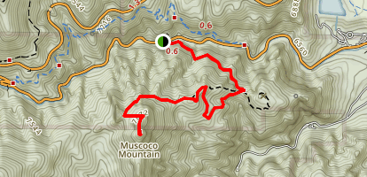Mount Muscoco Trail Map