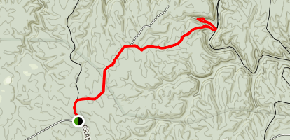 Randolph Wild Trail to the Waterfall Map