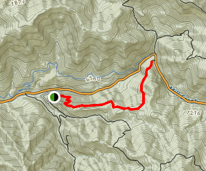 Terraces - Elbow Fork Trail Map