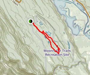 Cedar Snag and North Star Loop Map