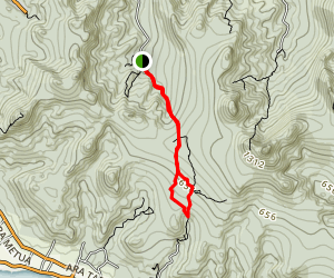 Cross Island Track and The Needle Map
