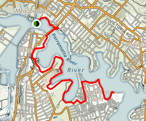 Parramatta River: Meadowbank to Cabarita Ferry Wharf Map