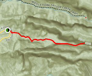 Taylor Creek - South Fork (CLOSED) Map