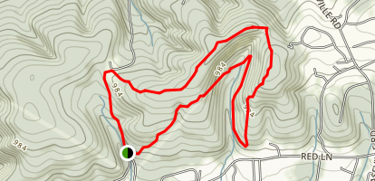 Black Bear and Turkey Loop Map