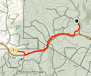 Grizzly Trail Map