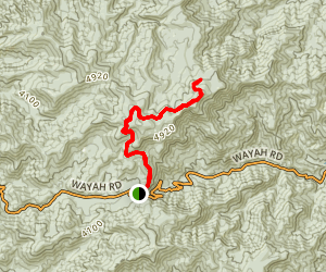 Wayah Bald via Appalachian Trail Map