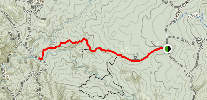 Upper Wolf Creek Road Map