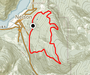 Vein Trail Map