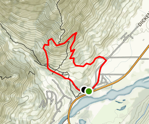 Swine Flu MTB Loop (Med, blue) Map