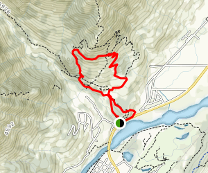 Mad Cow and Swine Flu Loop Trail Map