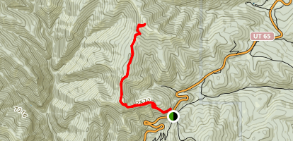 Big Mountain Trail Map